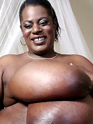 Bbw ebony, Bbw ebony black, Ebony big boobs, Bbw boobs, Feeding, Big black