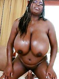 Ebony bbw, Bbw pussy, Black pussy, Hardcore, Bbw black, Ebony pussy