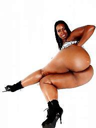 Ebony bbw, Black bbw, Bbw babe
