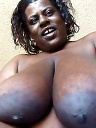 Bbw ebony, Bbw boobs, Bbw black