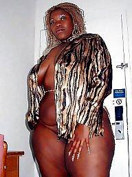 Ebony bbw, Bbw black, Asian bbw