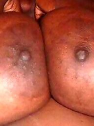Ebony bbw, Black bbw, Big nipples, Bbw ebony, Nipple, Ebony nipples
