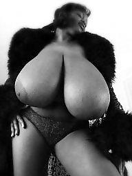 Bbw big ass, Grey, Bbw big asses