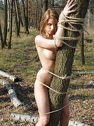 Tied, Forest, Tie