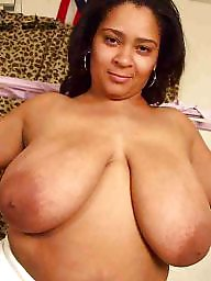 Bbw latina, Latina bbw, Bbw boobs