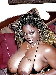 Ebony bbw, Latinas, Asian bbw, Blacked, Bbw latinas
