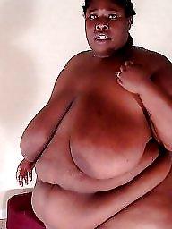Ebony bbw, Asian bbw, Latinas, Bbw latina, Latina bbw, Bbw women