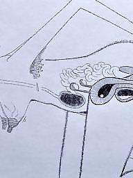 Cartoon, Cartoons, Drawings, Drawing, Draw