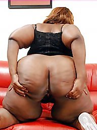 Black bbw, Ebony milf, Black milf, Lady milf
