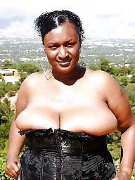 Bbw ebony, Black milf