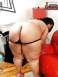 Big hips, Hips, Leggings, Legs, Thick, Bbw legs