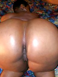 Ebony bbw, Black bbw ass, Ass bbw