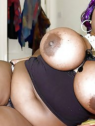 Ebony milf, Milf ebony, Feed, Black milf