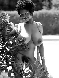 Ebony, Hairy ebony, Ebony hairy, Vintage ebony, Bush, Hairy bush