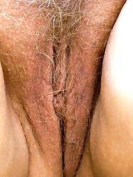 Hairy mature, Mature hairy