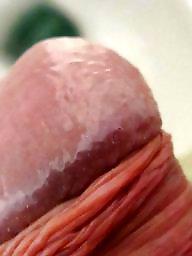 Cocks