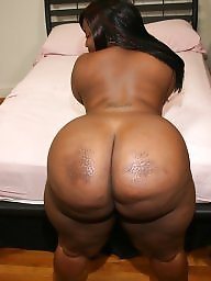 Ebony bbw, Bbw ass, Blacked