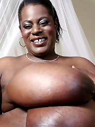 Ebony, Ebony boobs, Bbw ebony black, Bbw black