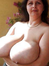 Milf tits, Milf big boobs, Big tits milf