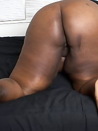 Ebony bbw, Black bbw, Bbw ebony, Milf ebony, Feed, Ebony milf