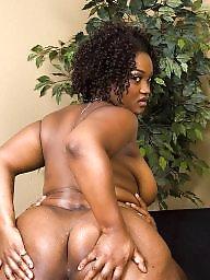 Ebony milf, Bbw black, Black milf, Ebony milfs, Feeding