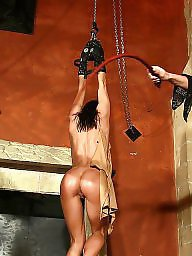 Pain, Whip, Strip, Whipping, Stripped, Whipped