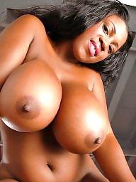 Ebony bbw, Ebony big boobs, Big ebony