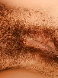 Mature pussy, Hairy pussy, Hairy amateur mature, Hairy amateur, Amateur hairy, Pussy mature