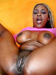Ebony bbw, Bbc, Black pussy, Ebony pussy, Bbw pussy, Bbw black
