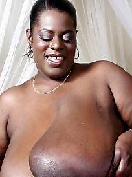 Bbw ebony, Ebony bbw, Bbw black