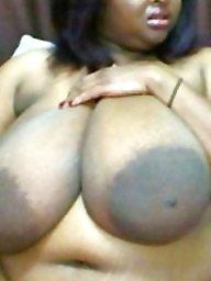 Black bbw, Bbw tits, Bbw big tits, Big black tits, Ebony big tits, Black tits