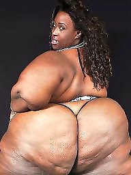Bbw black, Asian bbw, Ebony bbw, Latina bbw, Latinas, Bbw latina