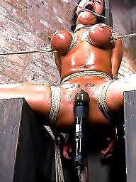 Bdsm, Train, Training