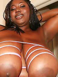 Black bbw, Ebony bbw, Bbw boobs, Big black