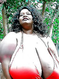 Black bbw, Ebony bbw, Latinas, Bbw women, Bbw latina, Asian bbw
