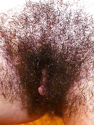 Hairy pussy, Hairy matures, Mature pussy, Mature hairy, Hairy mature