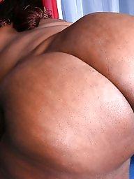 Ebony bbw, Bbw ebony, Ebony ass, Bbw black, Black bbw ass, Ass bbw