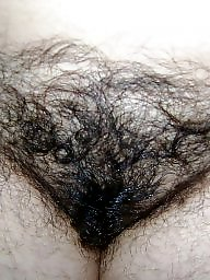 Hairy mature, Mature hairy, My wife, Mature wife