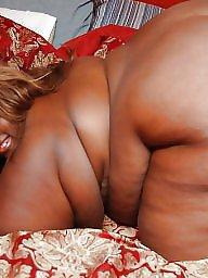 Ebony bbw, Bbw ebony, Bbw black