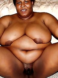 Ebony, Ebony bbw, Bbw black, Asian bbw, Bbw latina, Bbw ebony