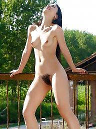 Bush, Hairy bush