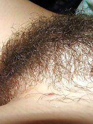 Hairy wife, Amateur hairy, Hairy amateur