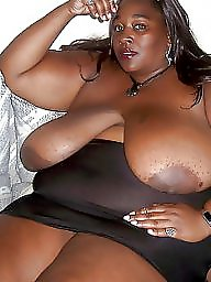 Bbw latina, Asian bbw, Bbw ebony, Bbw women, Bbw asian, Bbw latin