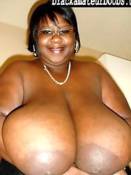 Bbw ebony, Big black, Bbw black