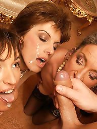 Mature, Mature sex, Mature group, Group sex, Guy, Mature lady