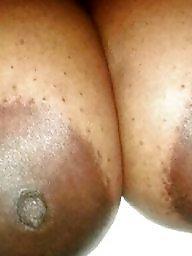 Ebony bbw, Black bbw, Big nipples, Nipple, Ebony nipples, Big ebony