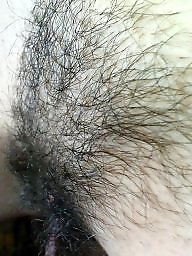 Hairy wife, Wifes, Wife amateur