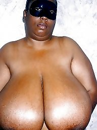 Boobs, Ebony bbw, Bbw ebony, Big boob, Big black