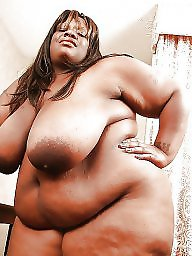 Black, Ebony bbw, Bbw black, Big black