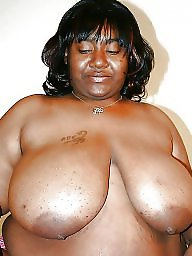 Ebony bbw, Black bbw, Bbw ebony, Bbw black, Blacked, Big ebony